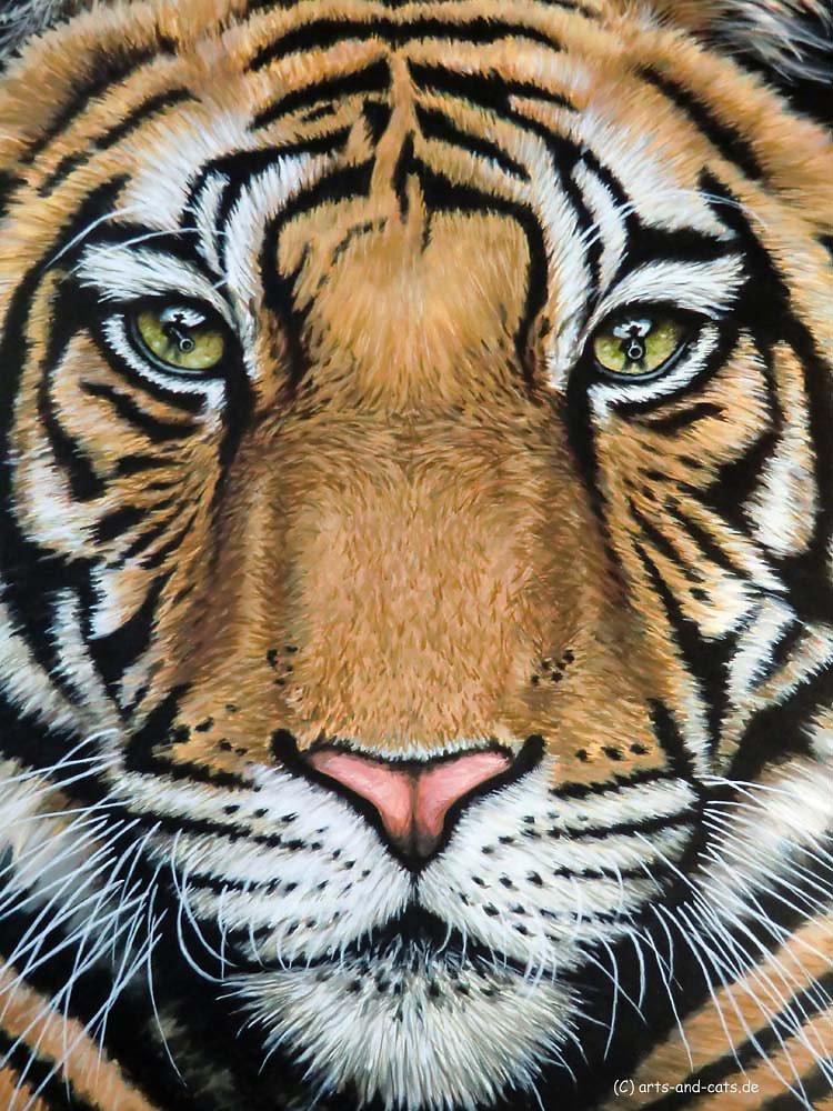 Tiger's Last Roar