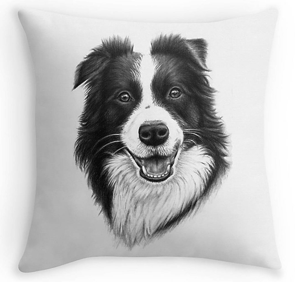 Border Collie Kissen - Pillow